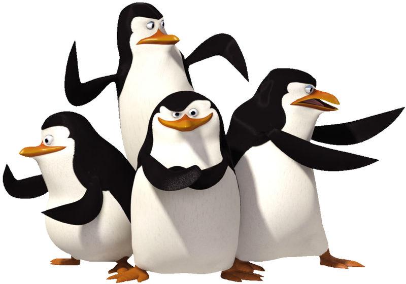 penguin ninjas