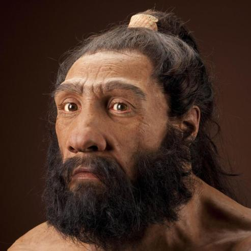 &homo neanderthalensis