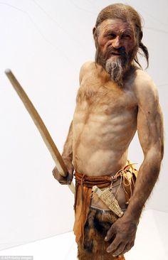 &homo sapiens- oetzi the iceman