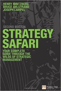 strategy-safari